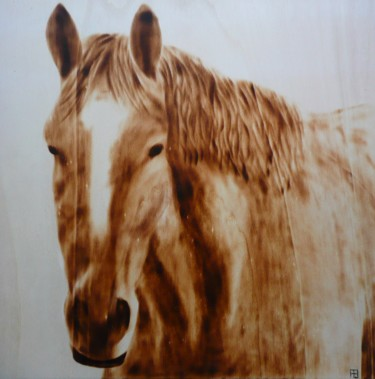 Cheval crinière ondulée